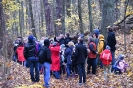 OTOP - Las Łagiewnicki – dolina Brzozy OŚRODEK REHABILITACJI DZIKICH ZWIERZĄT